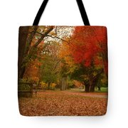 A Walk In Autumn - Holmdel Park Tote Bag