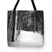 A Walk In Snow Tote Bag