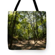A Walk In The Dunes Tote Bag