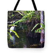 A Walk In The Glades Tote Bag