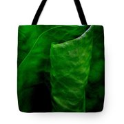 A Walk In The Woods 2 Tote Bag