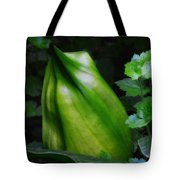 A Walk In The Woods1 Tote Bag