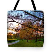 A Walk Through The Canola Fields At Sunset Tote Bag