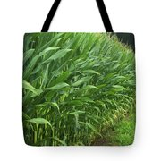 A Wall Of Corn Tote Bag