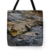 A Warning   #0557 Tote Bag