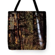 A Waterfall Tumbles Through The Forest Tote Bag