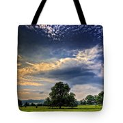 A Welsh Meadow Tote Bag