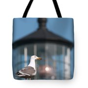 A Western Gull  Larus Occidentalis Tote Bag
