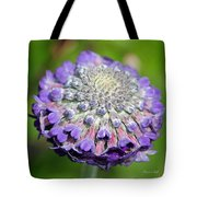 A Whatsis Squared Tote Bag by Suzanne Gaff