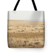 A White Mustang Feeds On Dry Grass Fields Of Arizona Tote Bag
