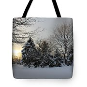 A White Winter's Morning Tote Bag