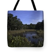 A Wide Expanse Of Marsh Tote Bag