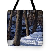 A Winter Day In New York Tote Bag