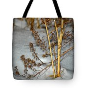 A Winter Tale  Tote Bag
