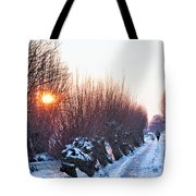 A Winter Wonderland Walk Tote Bag