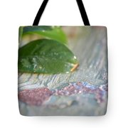 A Winter's Morning Light Tote Bag