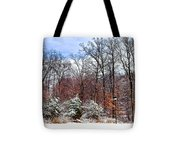 A Winters Scene Tote Bag