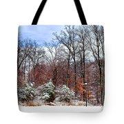 A Winters Scene Tote Bag