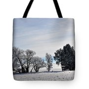 A Wintery Day Tote Bag
