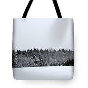 A Wintery Scene Along Goode Street Tote Bag