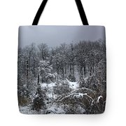 A Wintery View At The United States Military Academy Tote Bag