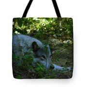 A Wolf Naps Tote Bag