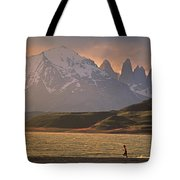 A Woman Explorer, Runs The Shores Tote Bag