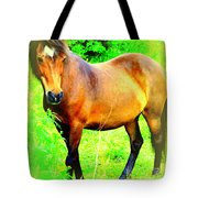 You Always Deserved A Wonderful Life  Tote Bag