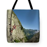 A Youg Woman Poses On A Ladder Bolted Tote Bag