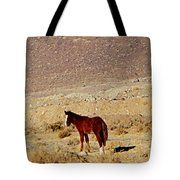A Young Mustang Tote Bag