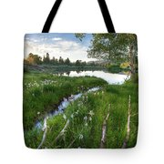 Abajo Mountains Near Montecello, Utah Tote Bag