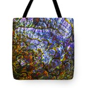 Abalone Shell 3 Tote Bag
