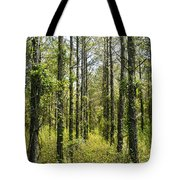 Abandoned Forest In Scott Arkansas Tote Bag