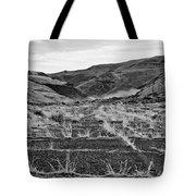Abandoned Highway - Yakima County - Washington Tote Bag
