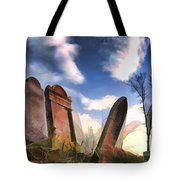 Abandoned Tombstones On The Prairie Tote Bag