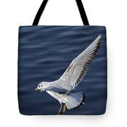 Above Level Tote Bag
