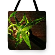 Above The Bamboo Tote Bag