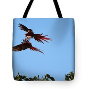 Above The Treetops Tote Bag