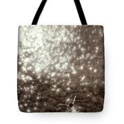 Above View Of Woman Swimming, Bw Tote Bag