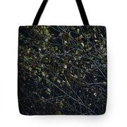Abstract Background Of Tree At Night Tote Bag