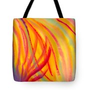Abstract Colorful Lines Tote Bag