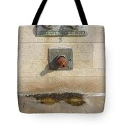 Abstract - Face - Just Goofing Off Tote Bag