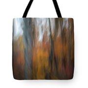 Abstract Fall 13 Tote Bag
