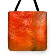 Abstract Fall 18 Tote Bag