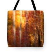 Abstract Fall 7 Tote Bag