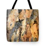 Abstract Natural Stone Tote Bag