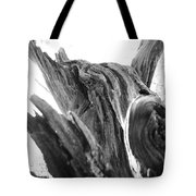 Abstract Of A Fallen Tree Root Tote Bag