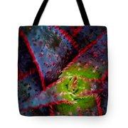 Abstract Of Bromeliad Tote Bag