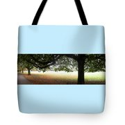Abstract Panorama Of Landscape Triptych  Tote Bag