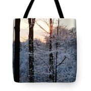 Abstract Winter Sunset Tote Bag